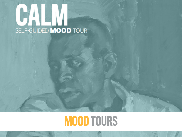 Picture of Health Mood Tours at the MFA